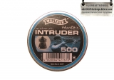 Walter intruder