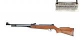 Пневматическая винтовка XT B3